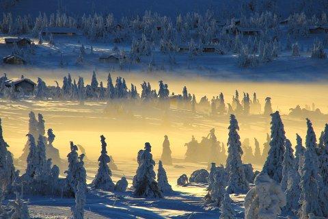VINNERBILDET: «Når solen går ned» vant januarkonkurransen soleklart. Bildet er tatt ved Sjusjøen i Ringsaker tidligere i år.