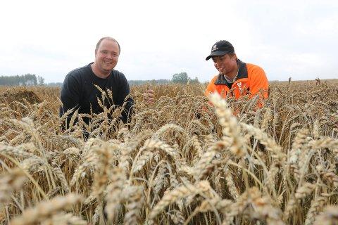 MER MAT: – Det bør produseres mer mat i Våler-jordbruket, sier Ola Sørlundsengen, til høyre, her sammen med bondekollega Ole Petter Venstad.
