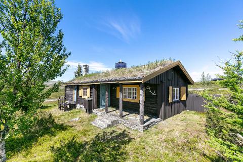 Hytta ligger for seg selv med utsikt mot fjellheimen og Stormyrtjønnet.