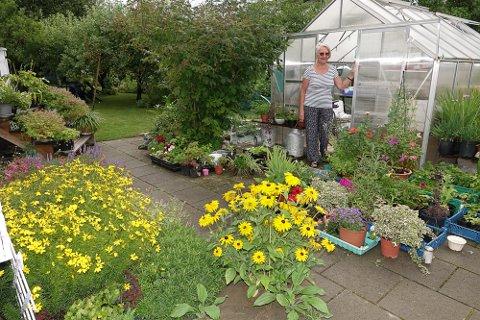 FRISKERE: Regnet har ført til friskere hager igjen, og Karin Bredesen er fornøyd.
