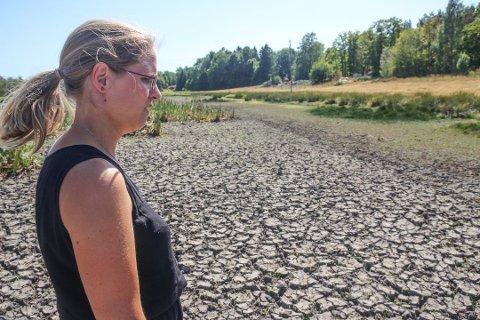 UTTØRKET: – Her kommer sauene ofte for å beite bare av rent instinkt. Før var det en innsjø her, men i år er det helt uttørket, sa Kristina Mørk Jacobsen da Øyene besøkte henne på Veierland tildligere i sommer.
