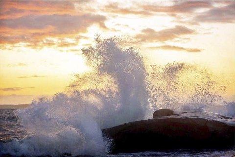 Bølgespill i vinden på Moutmarka. Foto: Anette Sahlsten