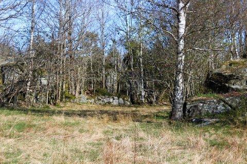 Det er stien i Omdal det er ulike innspill rundt.