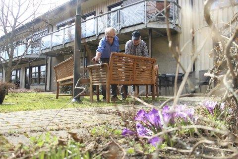 Spirer og gror: Samtidig som at blomsterbedene rundt om i bygda er i ferd med å få sine første innslag for sesongen, så er Rakkestad Rotaryklubb ute og jobber på dugnad. Foto: Joachim C. Høyer
