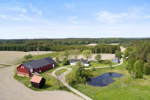 Storgård: Haraldstad gård er på 3015 dekar, hvorav 2.487 dekar er skog.
