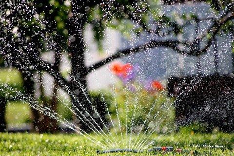 Rakkestad kommune har innført vanningsrestriksjoner for alle med kommunalt vann.