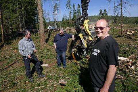 ERFAREN: Tømmerhogger Even Lund er en av de mest erfarne og drevne skogsmaskinførerne i Østfold. Skogbruksleder Jon Martin Bergum (bak til venstre) og produksjonsplanlegger Thore Stenrød jobber i Viken Skog.