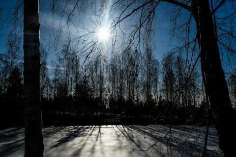 Solen skinte i Fladstadparken på onsdag.
