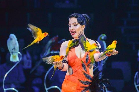 PRAKTFULLE PRAKTFUGLER: Laura Urunovas vakre papegøyer er noe av det du kan oppleve i Cirkus Arnardo 2019.