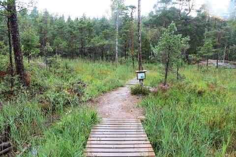 TIL LINNEKLEPPEN: DNT Indre Østfold arrangerer Kom deg ut-dagen på seks steder. Linnkleppen i Rakkestad er ett av dem.