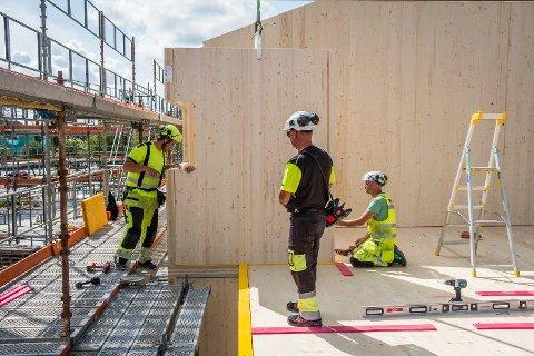Massivtre: De nye omsorgsboligene i Alleen er det første bygget av massivtre som blir reist i Rakkestad.