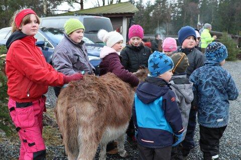 """POPULÆRT: Fjorårets """"Vinter Camp 2020"""" ble en suksess. Nå inviterer Kenneth Ask igjen barn til å tilbringe en dag i vinterferien på Vestre Knolden gård."""