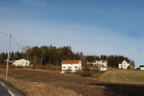 Skogholt: Boligene er planlagt i bakkant av husene.
