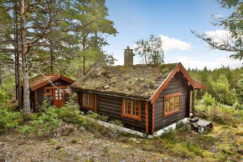 Rakstinger kan dra på hytta, hvis hytta ligger i egen kommune. Foto: Foto Etcetera AS
