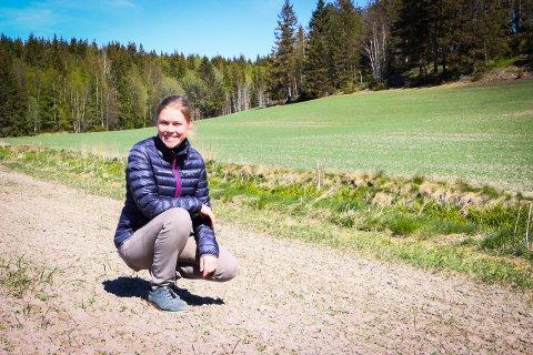 SPIRER: På Grimstad gård i Gautestadveien er det sådd til sammen seks mål med blomstereng. Signe Marie Jahren venter spent.