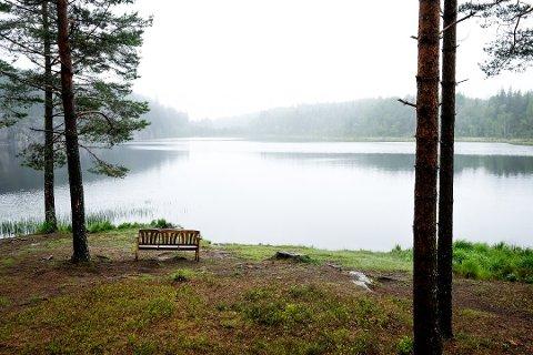 NATURPERLE: Grytelandstjern ligger som en stille naturperle.