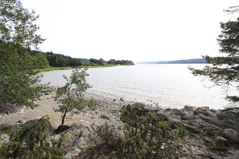 IDYLLISK: Suteren i Os i Rakkestad byr på lange strandstrender og en elv full av fisk. Nå kan kommunen sette opp en gapahuk 30 meter fra elvebredden på Suteren.