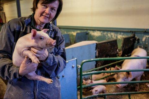 Skuffet: Bondelagsleder Anne Kristin Syverstad er skuffet over statens tilbud i årets jordbruksoppgjør.
