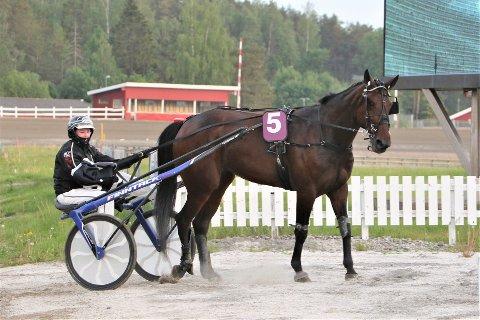 ECLAIR SISU: Rakkestad-hesten travet inn til en andreplass under forrige ukes V75-2 på Momarken. Her med travkusk Dag-Sveinung Dalen.