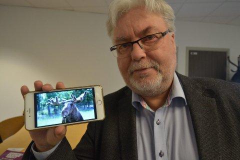 ADVARER: Kai Henriksen advarer mot å komme for nært elgen. Han forteller at han selv ble angrepet av elg da han var på skogstur med sin far for mange år siden. Foto: Viktor Leeds Høgseth