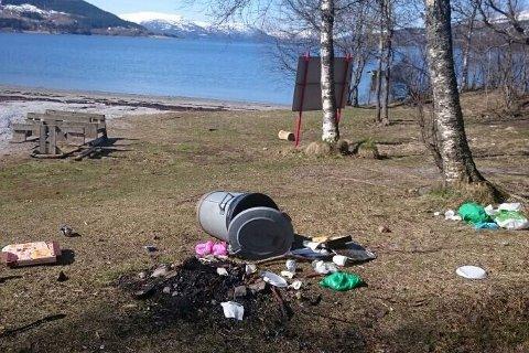 Grisete: Søppelbøtter var også veltet utover deler av området.   Foto: Anniken Elisabeth Nordland