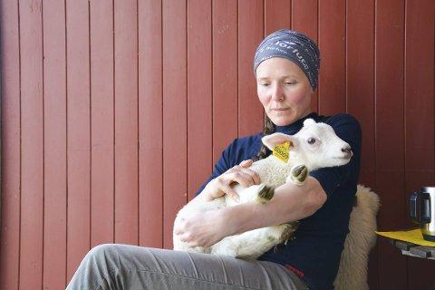 KOS: Randi Sollien Røssvoll med lam nummer 50009. Dette lammet skal vi følge gjennom livet, men da må det ha et skikkelig navn. Det håper vi dere kan hjelpe oss med. fOTO: vIKTOR lEEDS hØGSETH