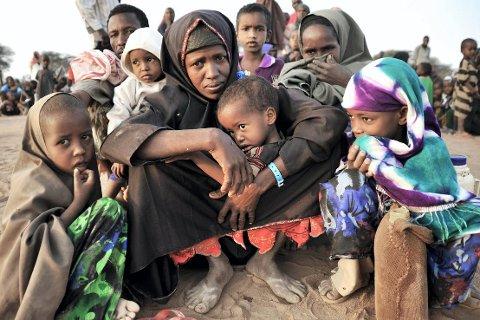Somalia er sterkt rammet av sult. Her har akkurat en somalisk familie på åtte ankommet flyktningsleiren Dadaab nordøst i Kenya. (Foto: UNICEF/ANB) *** Local Caption *** Somalia er sterkt rammet av sult. Her har akkurat en somalisk familie på åtte ankommet flyktningsleiren Dadaab nordøst i Kenya.
