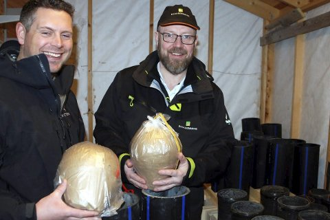 Fyrer: Håkon Dehlin (t.v.)  og Geir Waage forbereder seg til nyttårsfyrverkeriet.Foto: Privat