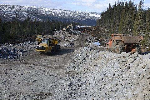 Finansiering: Det som nå må på plass er full finansiering av E6 Helgeland nord på 450 millioner, skriver Kjell-Idar Juvik. Foto: Arne Forbord