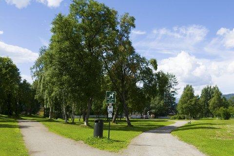 Ryddet: Grøntarealet i Talvikparken.