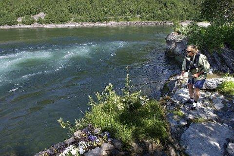 Fredag 15. juli starter et svært begrenset laksefiske i Ranelva, etter at Miljødirektoratet har gitt en tillatelse for et begrenset dokumentasjonsfiske.