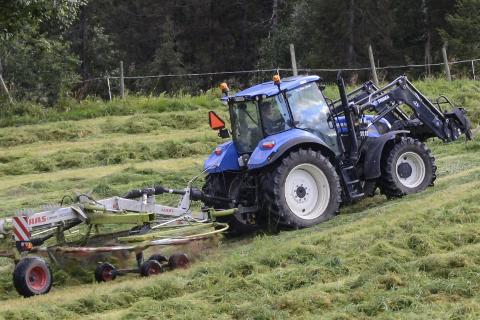 MYE GRAS: Årets sommer var helt perfekt for dem som produserer gras til husdyr. Været ga mye gras.  Foto: Arne Forbord