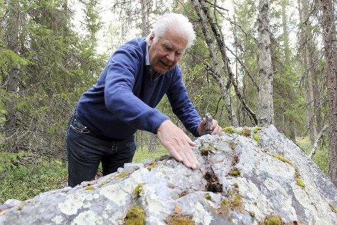 GULL: Bengt Ljung og hans firma skal grave gull nær Lycksele og starter så snart som mulig.
