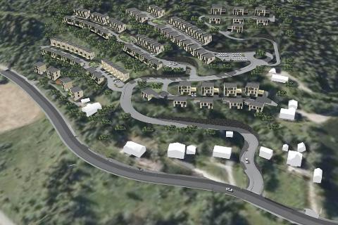 Stort: Området er 55 mål og planen er blant anna å bygge gangveier over Stenneset og Munklia til Båsmoen.