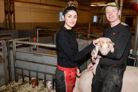 Vi drømte om et småbruk, me et ble en storgård på oss, sier Mariam Moen og Vegard Nedleirmo som kjøpte Villmoheia gård for 10 millioner kroner