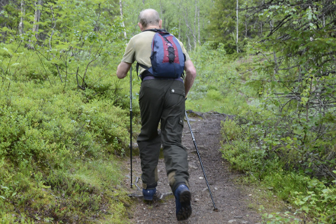TILBAKEMELDING: Midtre Nordland nasjonalparkstyre vil ha tilbakemelding blant annet om Saltfjellet-Svartisen Nasjonalpark. Foto: Arne Forbord