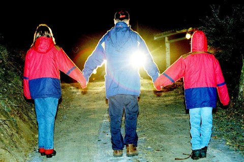 Fylkesmannen i Nordland er ikke fornøyd med Træna kommunes håndtering av barneverntjenestene det siste året.