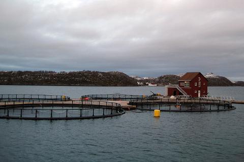 Rødøy er kommunen som kan se fram til aller mest penger fra havbruksfondet.