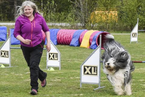 Kirsti Annhild Larsen synet det var kjempegøy å delta i sitt andre Agility-stevne. Hun deltok med to hunder.