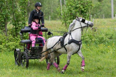 Stevnet yngste kusk, Hedda Sandnes kjørte fletta av flere av de voksne kuskene. Hun har Nordisk mesterskap for unge ryttere på Bjerke i Oslo neste sommer som sitt store mål.