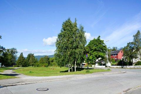 Her skal det anlegges midlertidige parkeringsplasser i Talvikparken.
