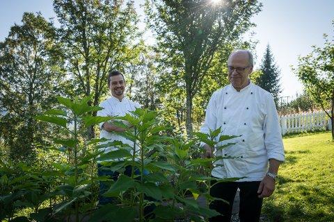 Anders og far Per Edvardsen har et godt år bak seg, med ny avtale for Verksmessa, kantineavtale med Momek og lokaldyrkede jordskokk de ikke er helt sikre på om overlever vinteren ute i jorda.