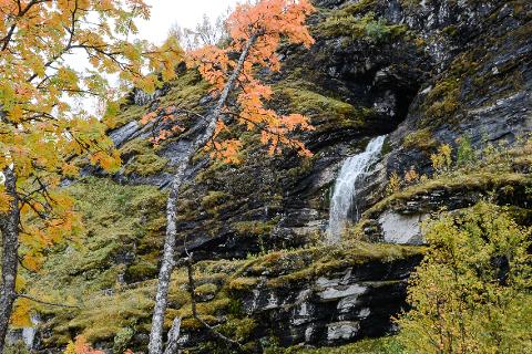 Sprutforsen i Plurdalen kan ende opp med å sprute vann som i gamle dager.