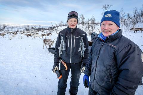 Søskenbarna Stig og Tom Lifjell er hoveddriverne av hver sin siida-andel i Ildgruben reinbeitedistrikt. Til sammen har de rundt 1000 dyr.