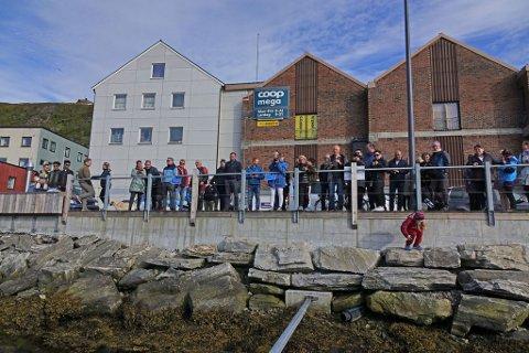 SAVNET: Hvaldimir svømmer ikke lenger i Hammerfest havn. Organisasjonen som passer hvalen, frykter han ikke kan navigere eller fange mat selv. Arkivbilde.