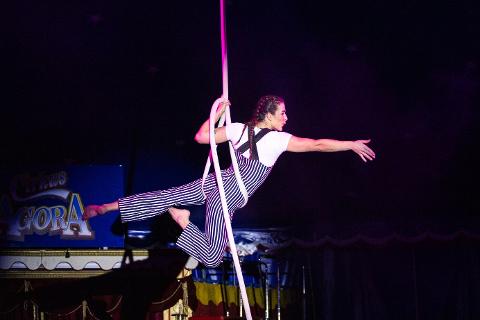Cirkus Agora kommer til Nesna 31. juli.