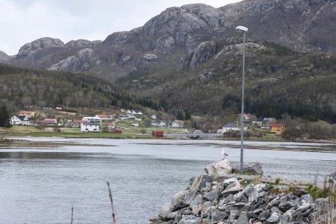 Konsvikosen i Lurøy.