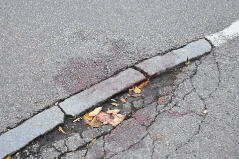 Et døgn etter at påkjørselen skjedde var det fortsatt blodspor igjen på ulykkesstedet.