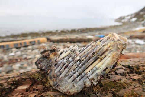 UVANLIG FUNN: Tine Marie Valbjørn Hagelin fant en klynge med sprøyter i fjæra i Rekvika. Hva det er, og hvorfor det havnet der, er fortsatt uvisst.