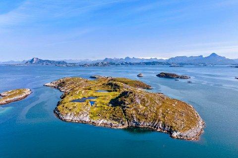 Futøya ligger i Rødøy kommune og skal nå selges.
